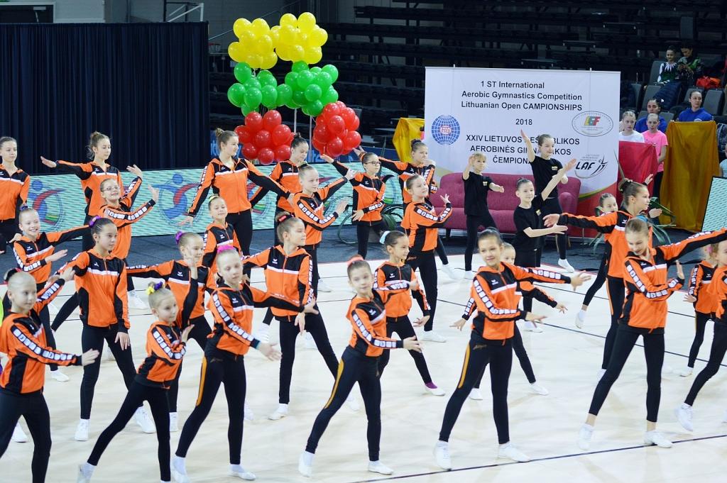2018 m. atviras Prienų čempionatas